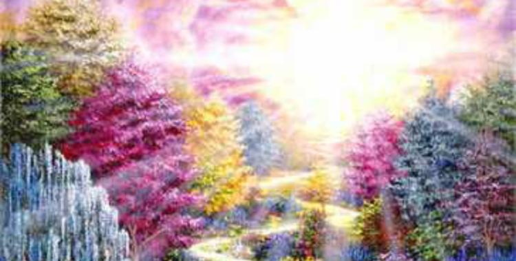 Orientação Espiritual E Sabedoria Dos Reinos Da Luz